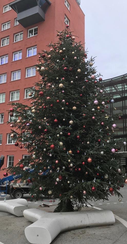 Wo Tannenbaum Kaufen.Christbaum Wolf München Weihnachtsbaum Kaufen Firmenservice Bayern